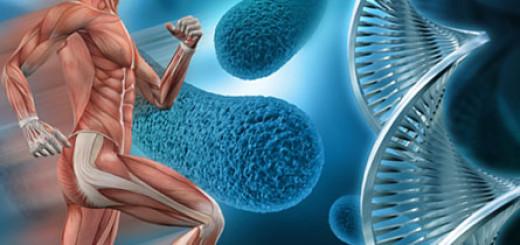 О медицине будущего, персонализированной по данным генома пациента
